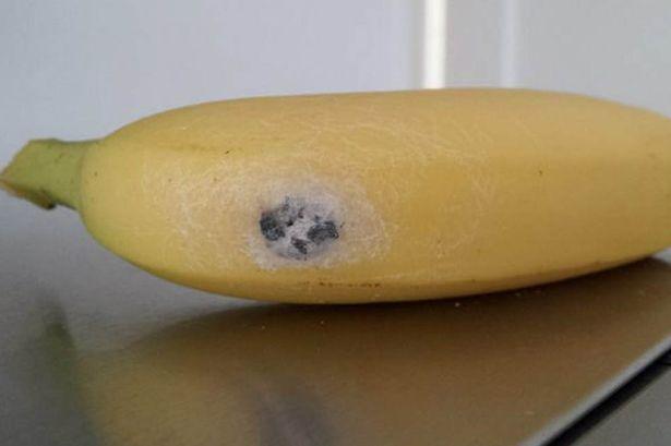 zirneklis un banāns