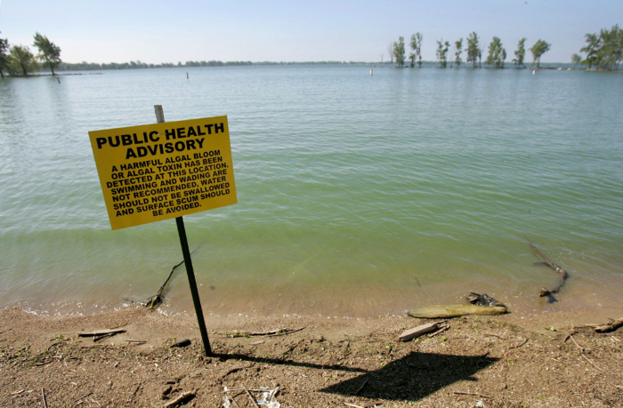 (toxic_lake_somerson_bargainnier_5/20/11) Public health advisory signs were posted yesterday at Grand Lake St. Marys in St. Marys, Ohio in warning of an algae bloom photographed May 20, 2011. The lake is still open for fishing and boating. (Dispatch photo by Tessa Bargainnier)