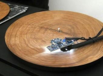 musica-disco-albero