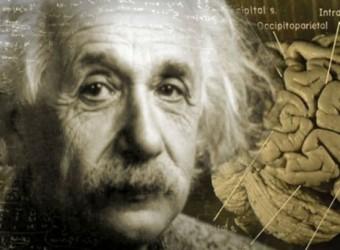 Alberts-Einsteins