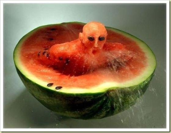 vampire watermelons