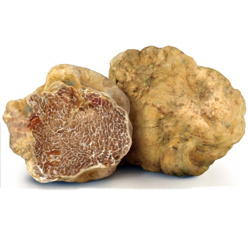 19-white-truffles