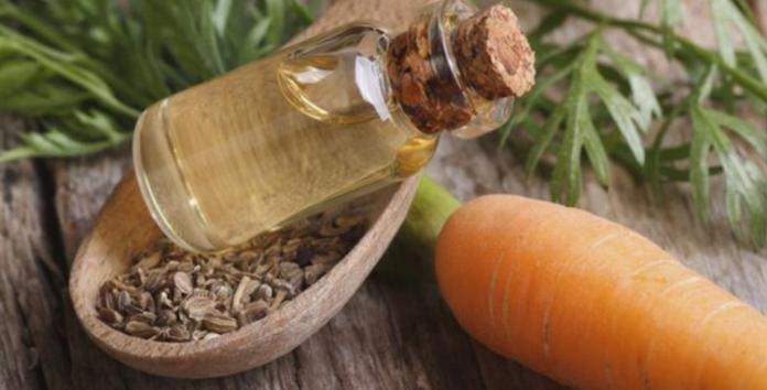 Tautas medicīnas līdzeklis pret dažādām kaitēm – burkānu eļļa. Recepte