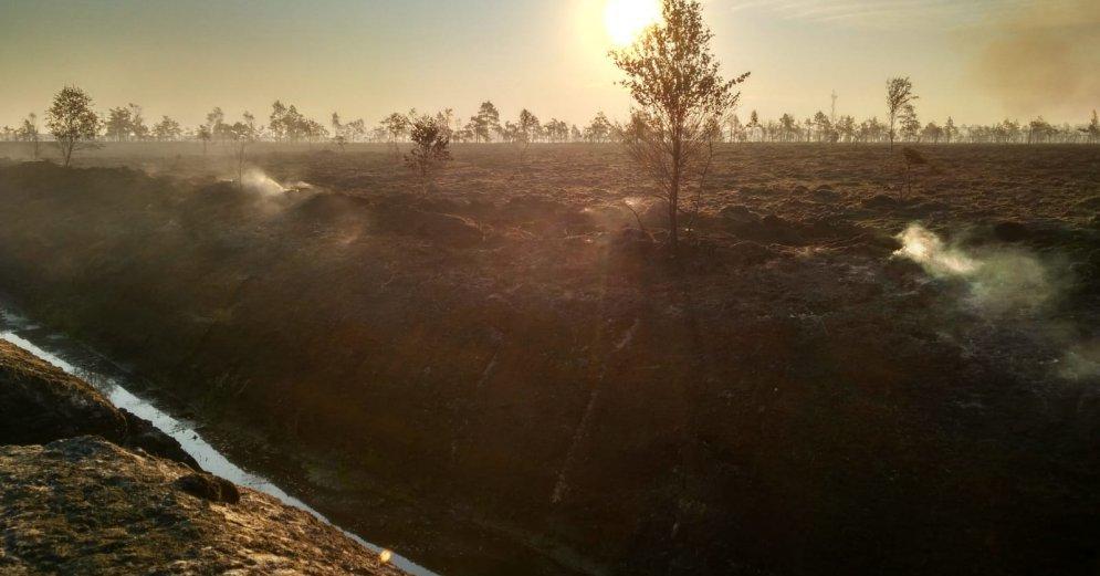 VUGD: Aktuālā informācija par kūdras ugunsgrēku Talsu novada Valdgales pagastā