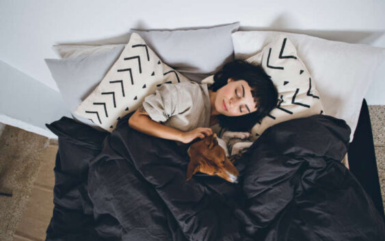 Dormeo matrači