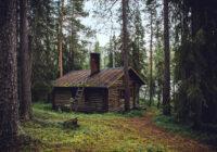 Nesen uzzināju par vīrieti, kurš aizgāja dzīvot mežā. Un pat negrasās atgriezties pilsētā